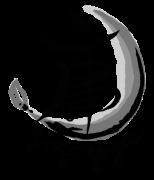 Yong Yoga Logo